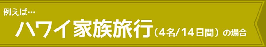 ハワイ家族旅行(4名/14日間)